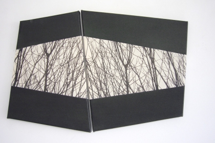 Gudrun Klebeck, View from the Dark I, 2012