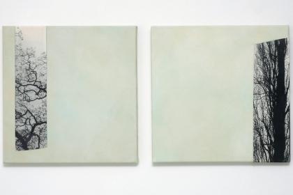 Gudrun Klebeck, Baum Aspekte I, II, 2011