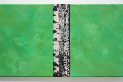 Gudrun Klebeck, Birch Trees II, 2010