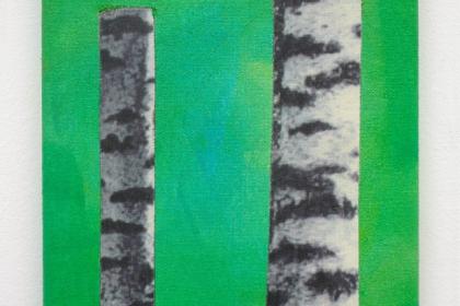 Gudrun Klebeck, Birch Trees X, 2011
