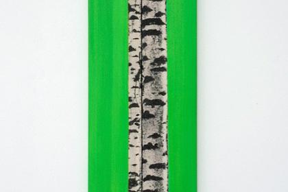 Gudrun Klebeck, Birch Trees, 2012