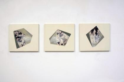 Gudrun Klebeck, Birch Trees Bright I - III, 2013