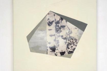 Gudrun Klebeck, Birch Trees Bright III, 2014